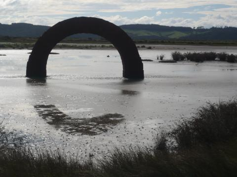 Andy Goldsworthy, Arches 2005, Gibbs Farm, photo by Rob Garrett