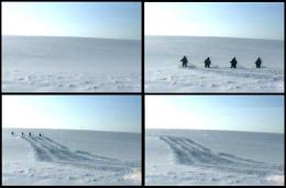 Where Dogs Run, The Way (Дорога), 2007, video stills; courtesy of the artists